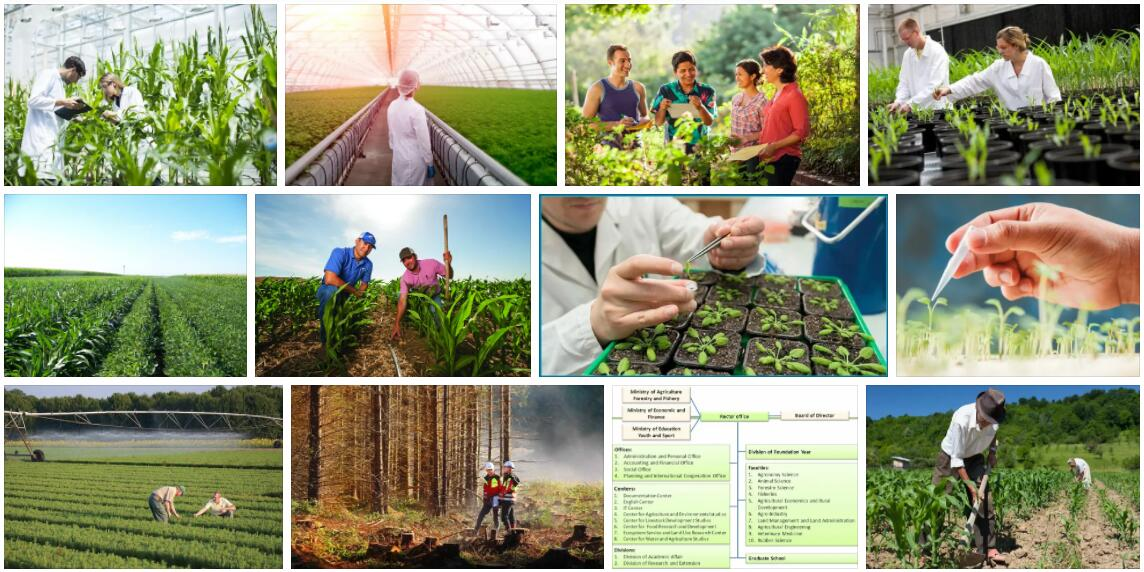 Study Agricultural And Forest Sciences