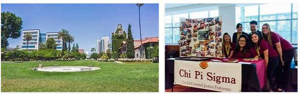 Study in San Jose State University 8