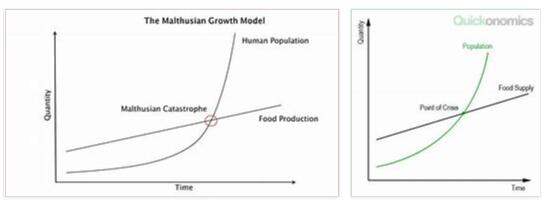 What is Malthusian Theory